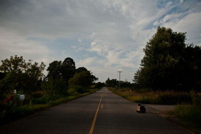 Повернення додому (20 фото)
