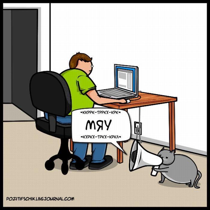Кіт vs. Інтернет (21 картинка)