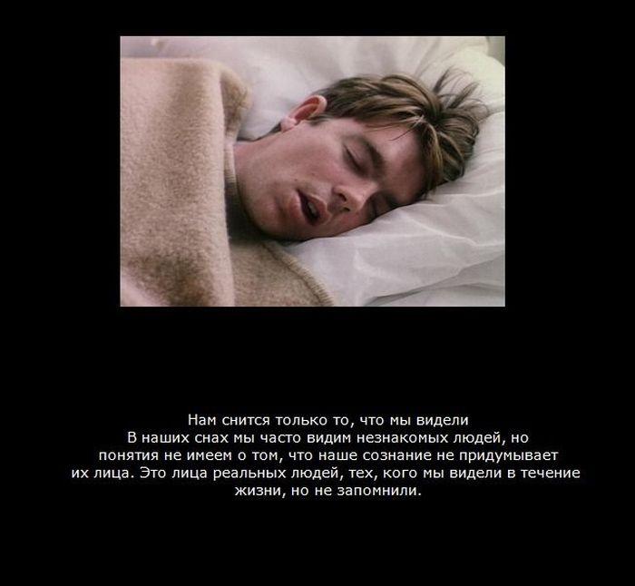 Факти про сон (9 фото)