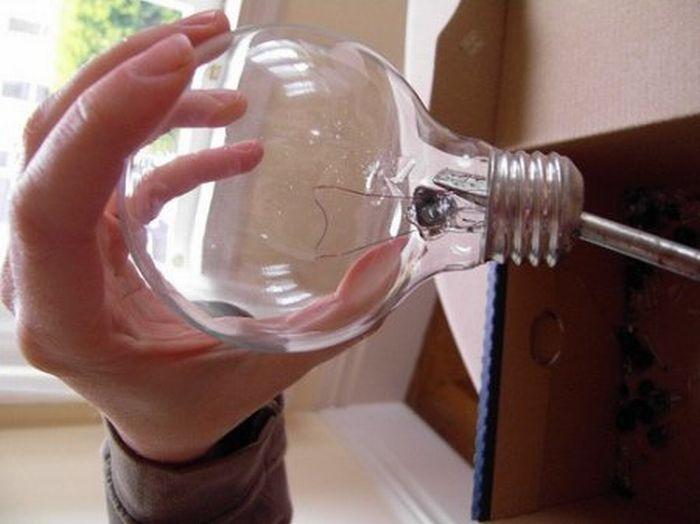 Креатив із звичайних лампочок (17 фото)