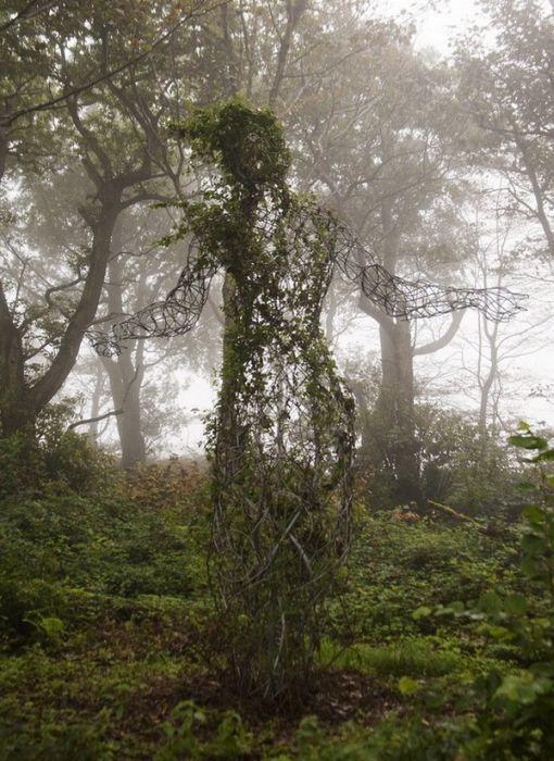 Загублені сади (39 фото)