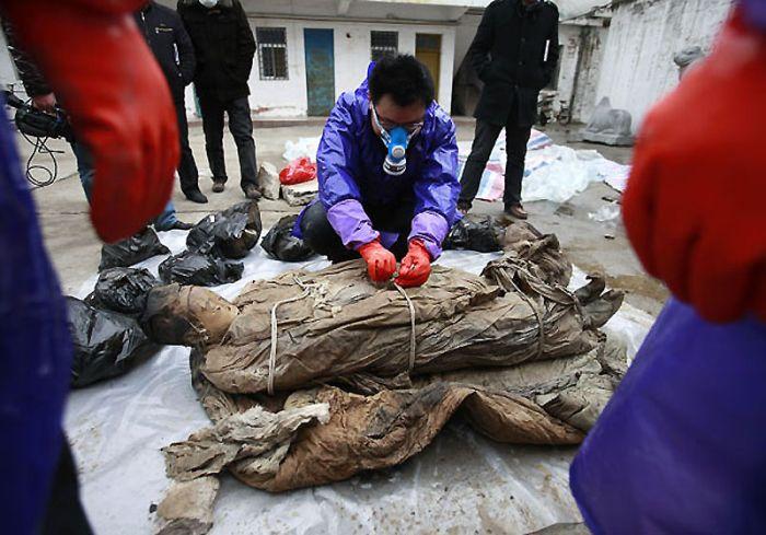 Будівельники знайшли мумію (13 фото)