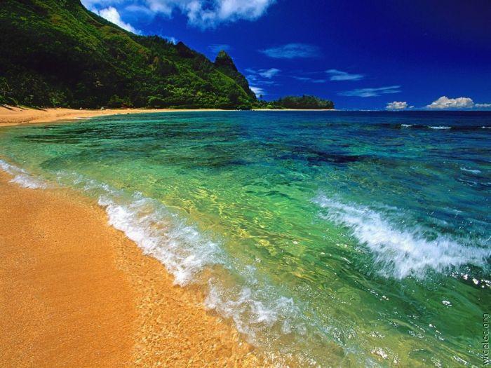 Шматочок раю (104 фото)