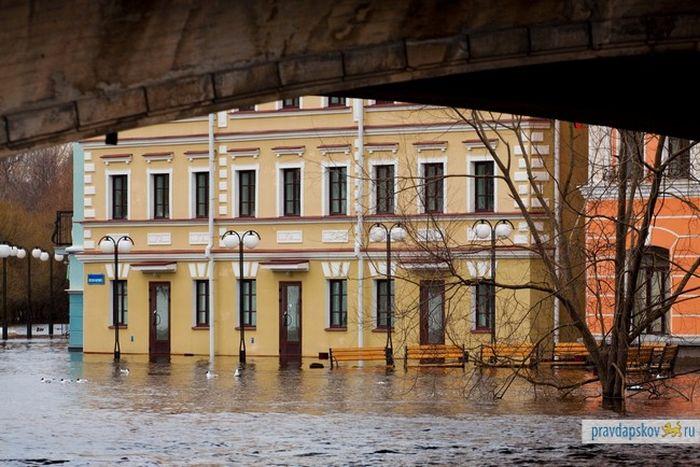 Псков перетворився на Венецію (23 фото)