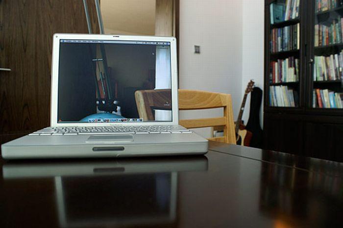 Прозорі шпалери для робочого столу (40 фото)