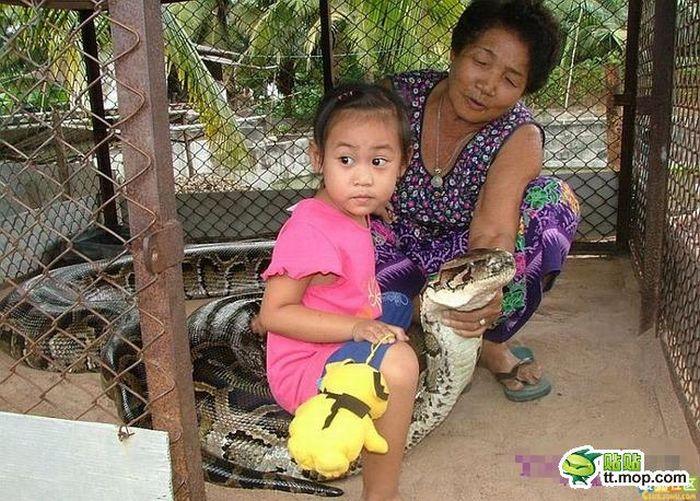 Сімейний похід в зоопарк (8 фото)