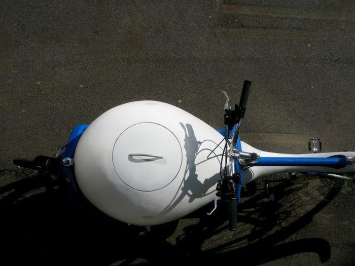 Креативний спосіб перевезення сперматозоїдів (7 фото)