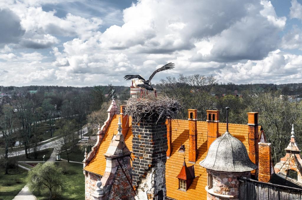 Цесвайнский замок, Латвия: описание путешествия, Путешествие и отдых