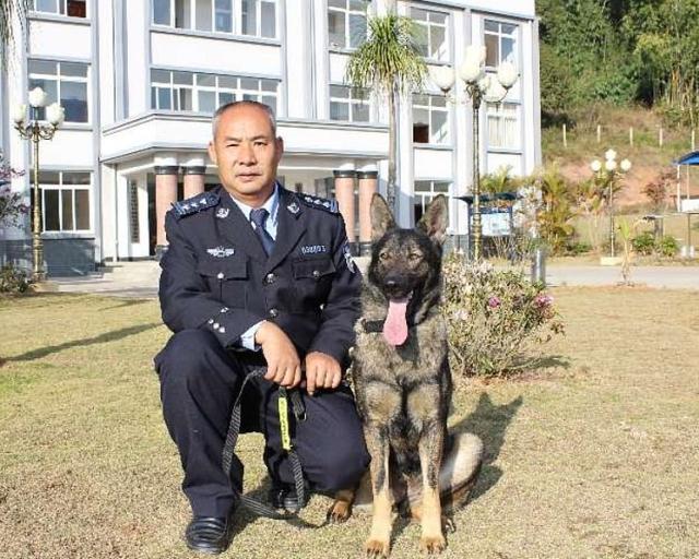 В Китае первый клон полицейской собаки приступил к тренировкам. МиР