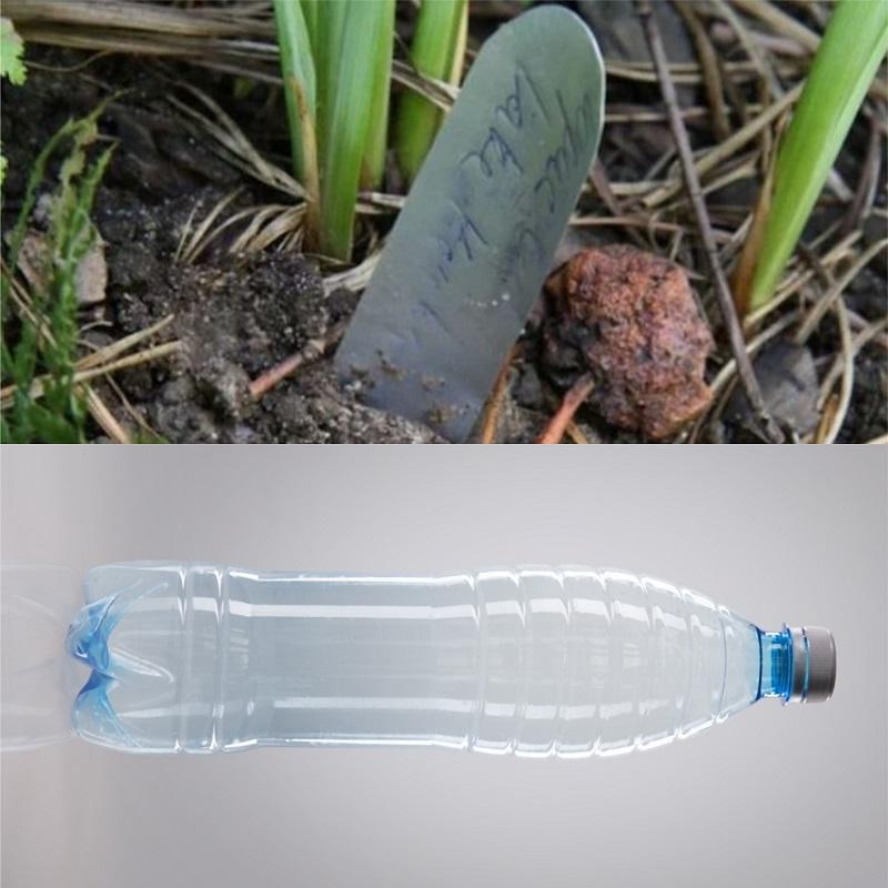 Как использовать пластиковые бутылки на даче вдохновение