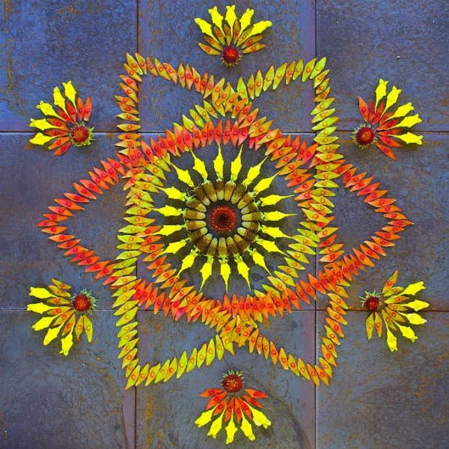 Художница создает красочные мандалы из цветов и растений мандала