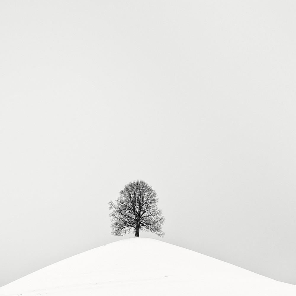 Тихий восторг. Пейзажные фотографии Пьера Пеллегрини интересное